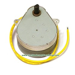 Motor Reductor de volteo para Incubadora Octagon