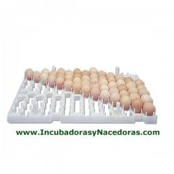 Bandeja porta-huevos serie astral para gallinas.
