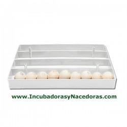 Bandeja porta-huevos serie astral para ocas.