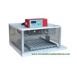 Incubadora Maino BRAHMA X18 36 D