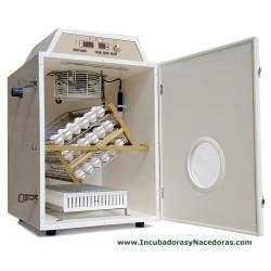 Incubadora con Nacedora Masalles Mod.25-C PDS